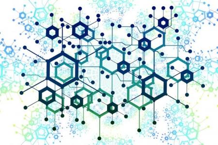 Image réseau polygones