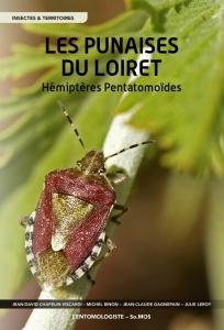 photo insecte punaise; Jean-David CHAPELIN-VISCARDI