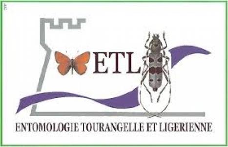 logo association ETL