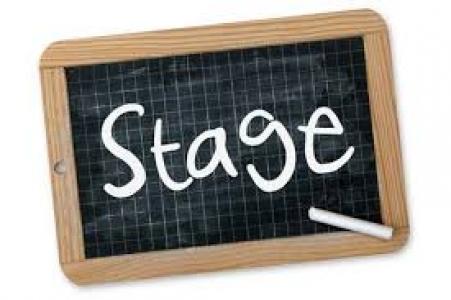 Stage Master 2 - Micro-phénotypage de parois de cellules