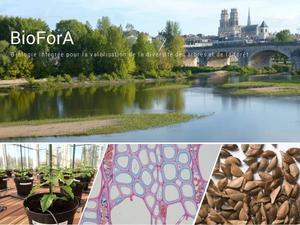 BioForA_bienvenue