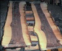 Tranchage d'un tronc de noyer noir (Juglans nigra)
