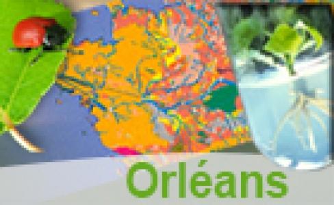 Plan d'accès au site d'Orléans