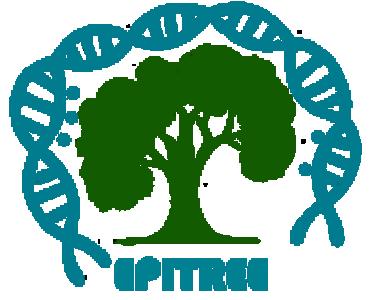 Logo-Epitree