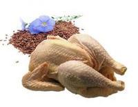 export poulet