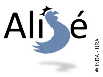 Logo équipe AliSE