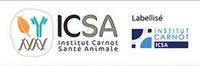 Logo ICSA