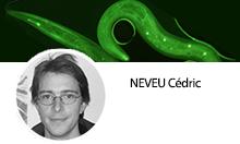 """Multiresistance and pathogeny factors from nematodes"" team"