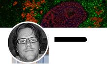 """""""Avian immune response and pathogenesis"""" team"""