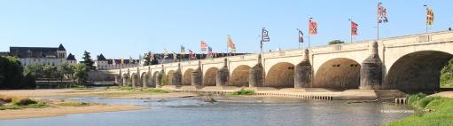 Wilson bridge in Tours - France