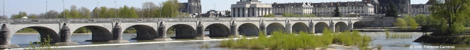 Le pont Wilson à Tours - France