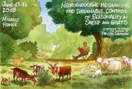 Mécanismes neuroendocriniens et le contrôle durable du saisonnement