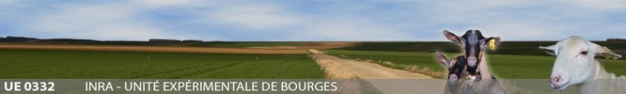 Inra - Unité expérimentale de Bourges