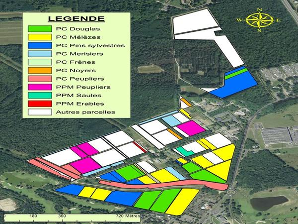 carte pépinière