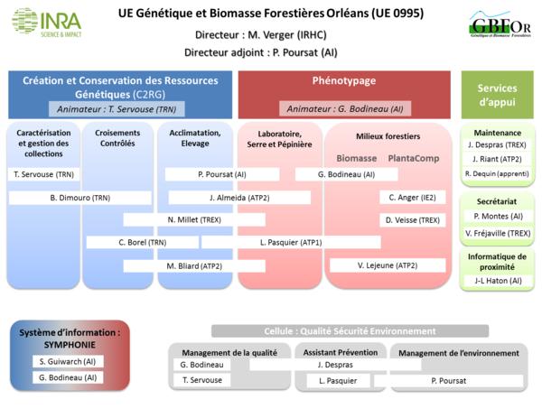 organigramme GBFOR_v18