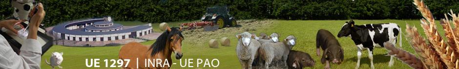Bienvenue sur le site de l'UE PAO