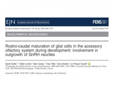 Publication : Geller et al., 2017