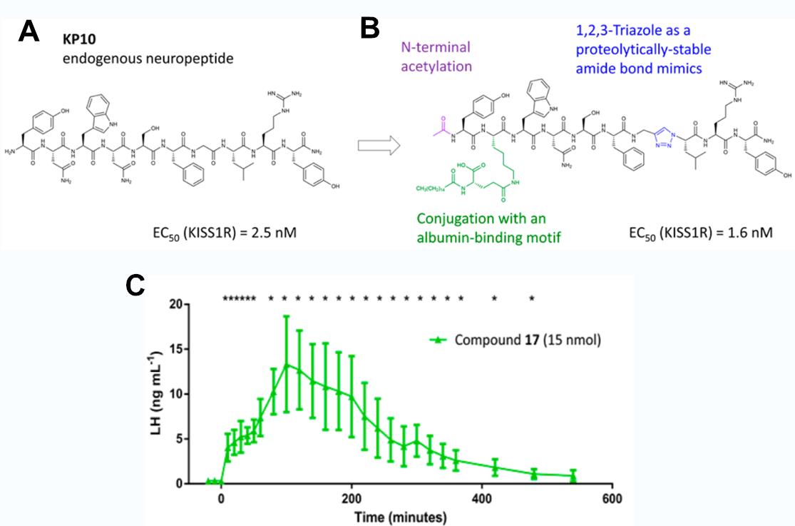 Structure chimique du neuropeptide endogène Kiss
