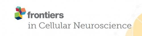 Front Cell Neurosci.