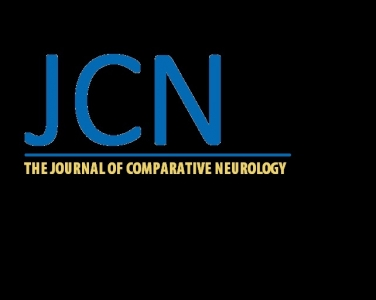 Journal of comparative neurology