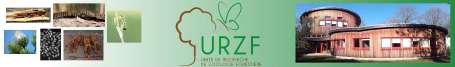Bienvenue sur le site de l'Unité de Recherche de Zoologie Forestière